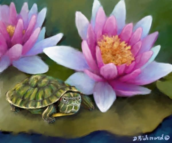 Turtle on Lily Pads
