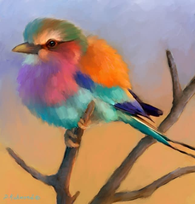 Lilac Breasted Roller II