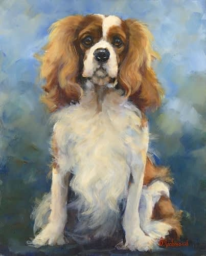Dogs – Small – King Charles Spaniel